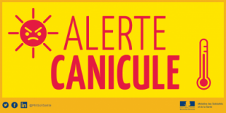 canicule-tw1-1-823